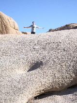 Peter victorious. Joshua Tree National Monument. c 2009 B.F. Newhall