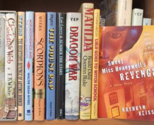bookshelf with children's books, including one by Kathryn Reiss. photo by BF Newhal