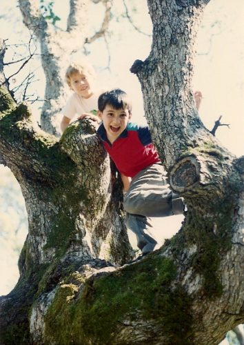 Two mischievous boys in an oak tree. Photo by BF Newhall.