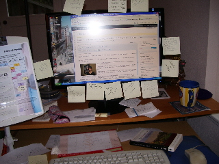 My computer monitor in action. Photo by Bf Newhall