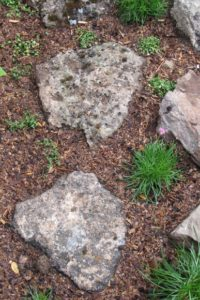 Lava rocks laid in ground for steppingstone garden path. Photo by BF Newhall