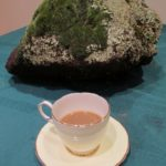 teacup with a rock on a table. Photo by BF Newhall