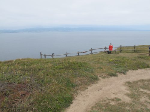 A hiker in red shirt rests on bench overlooking Drake's Bay at Chimney Rock, Point Reyes, CA. Photo by BF Newhall