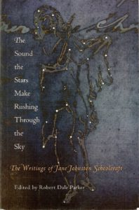 "Cover of the book ""The Sound the Stars Make Rushing Through the Sky"" is dark bluke with stars in shape of a woman."