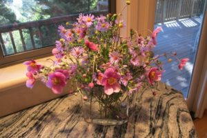 Japanese anemones and asters arranged in a glass vase on a granite counter. Photo by BF Newhall