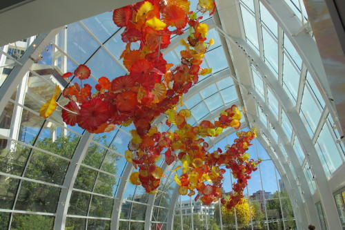 The Chihuly Glasshouse and Glasshouse Sculpture -- yellow and orange glass shapes float overhead in a glasshouse designed by Dale Chihuly, fulfilling his lifelong dream. Photo by Barbara Newhall