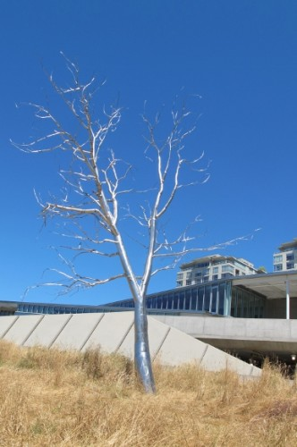"silver tree sculpture, ""Split,"" by Roxy Paine, 2003. Stainless steel, from the artist's attempts to create artificial landscapes. At Seattle's Olympic Sculpture Park. Photo by Barbara Newhall"