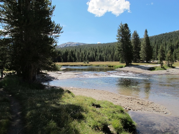 River running through Tuolumne Meadows, Yosemite, in September. Photo by Barbara Newhall