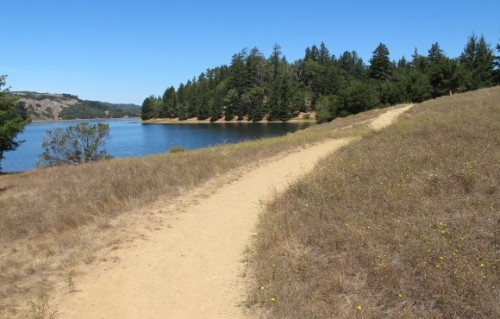 A trail alongside Bon Tempe Lake in Marin county, California. Photo by Barbara Newhall