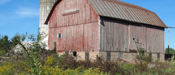 Mason County, Michigan — My One-Woman Road Trip Takes Me to Falconer Country
