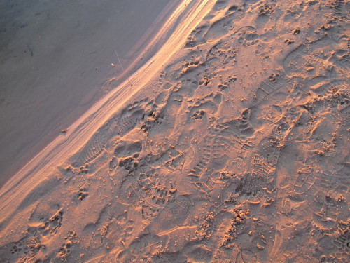"Footprints in the clean white sand on Lake Michigan's eastern shore. Photo by Barbara Newhall. Barbara Falconer Newhall travels up and down Michigan's lower peninsula, visiting friends and family and putting on book events for ""Wrestling with God."""