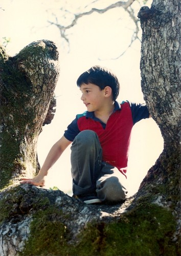 A lively 7-year-old boy who has climbed up in an oak tree. He needs no TV to have fun. Photo by Barbara Newhall