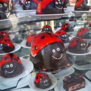 Colorful chocolate candy for sale in Istanbul shop. Photo by Barbara Newhall