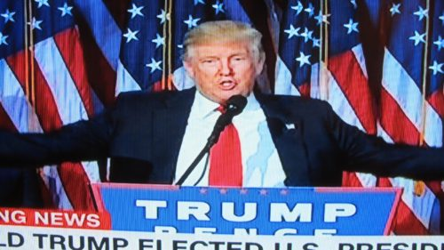 Donald Trump victorious on cable TV. I'm going to stop bad-mouthing Donald Trump. Photo by Barbara Newhall
