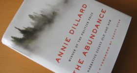 """Cover of the book """"The Abundance"""" by Annie Dillard. Photo by Barbara Newhall"""